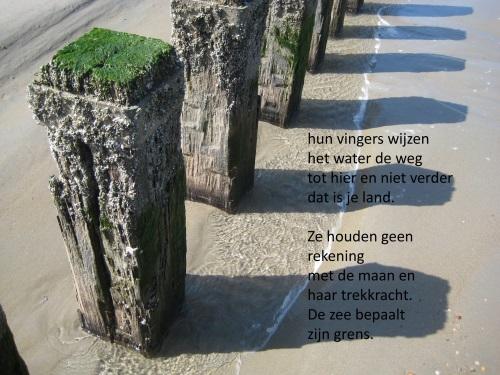 Voorproefje uit de dichtbundel Thuisland van Sterre van Resum en Goos Verwoest